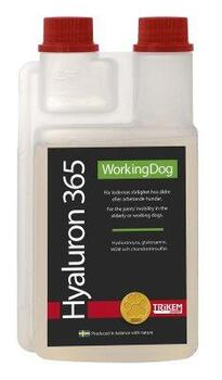 WorkingDog - Hyaluron 365 1L