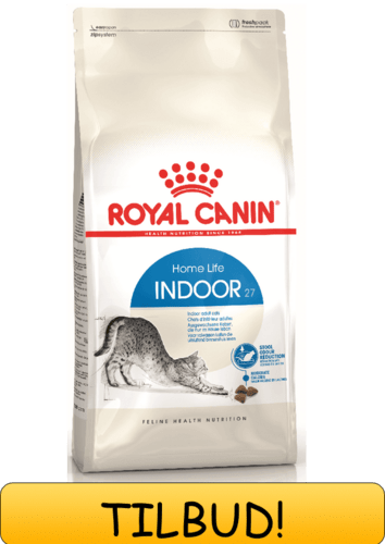 Royal Canin Indoor 10 kg.