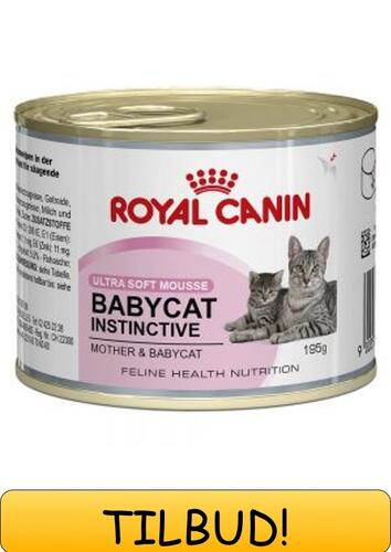 Royal Canin Babycat Instinctive mousse 195g