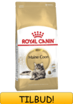 Royal Canin Maine Coon 4 kg.