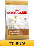 Royal Canin Labrador Retriever Adult 12 kg.