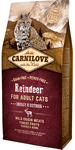Carnilove Reindeer for Adult Cats Energy og Outdoor (6kg)