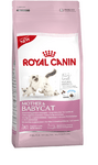 Royal Canin Mother & Babycat 4 kg.